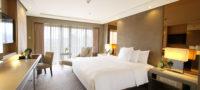 Executive 1 Bedroom Suite